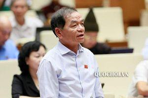 Đại biểu Lê Thanh Vân: Thận trọng xem xét thí điểm không tổ chức Hội đồng nhân dân phường