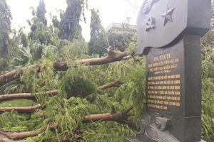 Bình Định khẩn trương khắc phục những di tích bị ảnh hưởng do bão