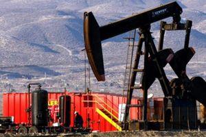 Giá xăng dầu hôm nay 15/11 sụt giảm trước lo ngại mới