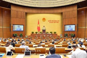 Hôm nay (15/11): Quốc hội thảo luận ở tổ về Dự án Luật Doanh nghiệp (sửa đổi)