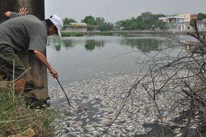 Cá chết nổi trắng mặt hồ ở Quảng Trị do thiếu ôxy?
