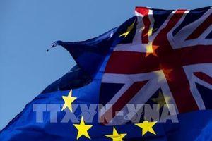 EC khởi động vụ kiện pháp lý chống lại Anh