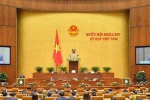 Tuần làm việc thứ năm: Quốc hội tập trung cho công tác lập pháp và nhân sự