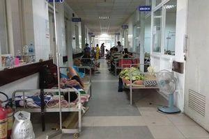 TP Đà Nẵng ghi nhận trên 6.600 ca mắc sốt xuất huyết