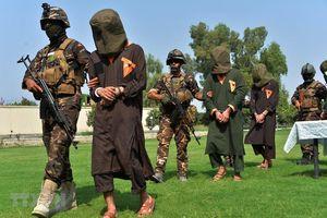 Afghanistan hoãn trao đổi tù nhân với nhóm phiến quân Taliban