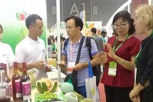 Dự án VCED hỗ trợ các Hợp tác xã Việt Nam phát triển