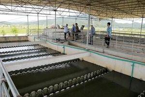 Tìm giải pháp cấp nước sạch với giá thành hợp lý cho thành phố Vinh