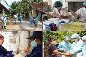 Công tác phòng, chống dịch bệnh: Vẫn còn nhiều con số đáng lo ngại