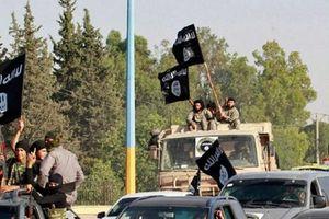 Khủng bố IS bị đánh tan tác trên chiến trường Homs vì...liều