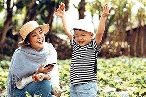 Diễn viên Dương Cẩm Lynh: Đồng cảm với vai diễn bà mẹ đơn thân