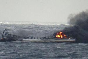 Sáu lao động người Việt mất tích khi 1 tàu cá Hàn Quốc bốc cháy