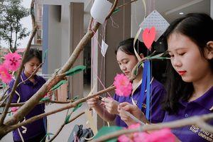 Ngày 20/11, thầy cô giáo nhận 'cây trồng' không nhận hoa