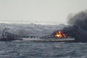 6 thuyền viên Việt Nam mất tích tại Hàn Quốc