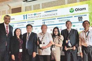 ST25 của Việt Nam đoạt giải 'gạo vương' 2019