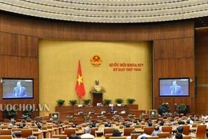 Quốc hội 'chốt' phương án tăng tuổi nghỉ hưu lên 62 tuổi