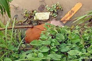 Nam Định: Phát hiện thi thể trôi dạt ở cửa biển Hải Thịnh