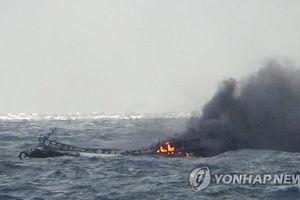 Bộ trưởng Đào Ngọc Dung chỉ đạo các cơ quan liên quan xử lý vụ 6 thuyền viên Việt Nam mất tích trong vụ cháy tàu cá Hàn Quốc