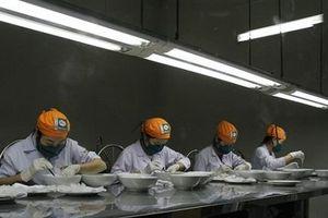 Xuất khẩu yến sào sang Trung Quốc hướng tới mục tiêu 150 triệu USD