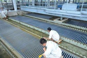Tỉ phú Thái 'thâu tóm' nhà máy nước sông Đuống, nhiều vấn đề đặt ra
