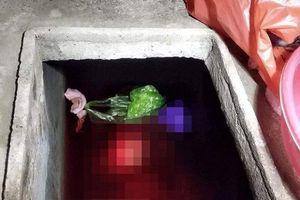 Thái Bình: Bắt con rể sát hại mẹ vợ, vứt xác vào bể nước phi tang