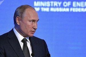 Tổng thống Putin đáp lại lời kêu gọi giảm sử dụng khí đốt của Nga