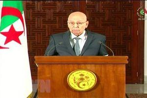 Bầu cử Tổng thống Algeria: Ra mắt cơ sở dữ liệu quốc gia về bầu cử