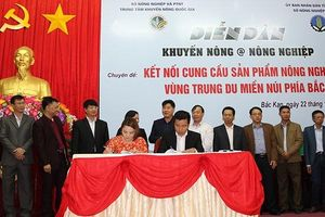Big C ký hợp đồng tạo sinh kế cho 200 hộ nông dân thiểu số Bắc Kạn