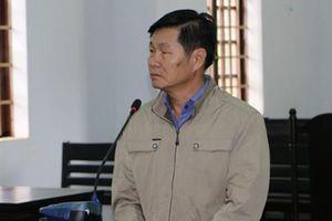 Đắk Nông: Nguyên Phó chủ tịch huyện vướng vòng lao lý vì lấn chiếm đất rừng