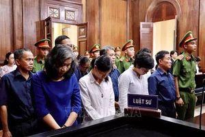Tuyên phạt Hứa Thị Phấn 20 năm tù