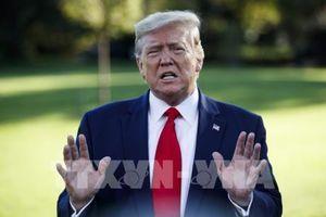 Cử tri Mỹ: Truyền thông đưa tin sai lệch về điều tra luận tội Tổng thống Trump
