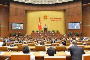 Điểm nhấn tuần làm việc thứ 5 của Quốc hội tại Kỳ họp thứ 8