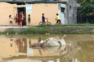 Phụ huynh ở Thanh Hóa phát hoảng với nguồn nước đầu vào bị ô nhiễm trầm trọng