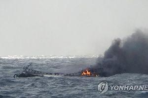 Chưa tìm thấy tung tích các thuyền viên Việt Nam gặp nạn tại Hàn Quốc