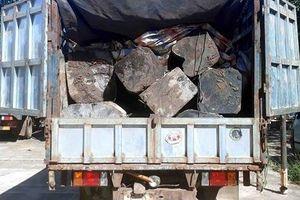 Gia Lai: Tài xế chở gỗ lậu bỏ xe chạy trốn khi thấy Công an