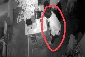 Clip: Kẻ trộm táo tợn đột nhập quán cà phê 2 lần trong 2 tháng