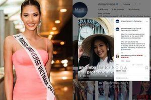 Hoàng Thùy khiến khán giả 'nở mặt' khi xuất hiện nổi bật trên Instagram hơn 3 triệu follow của Miss Universe