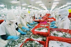 Doanh nghiệp xuất khẩu hàng hóa 'một cổ đôi tròng'