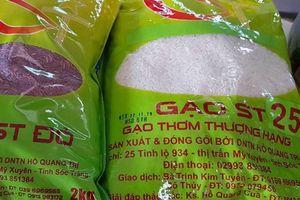 ST 25 mở ra cơ hội vàng cho ngành lúa gạo Việt