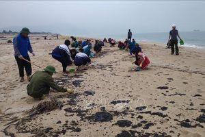 Cặn dầu bám đen hơn 3 km bờ biển Hà Tĩnh
