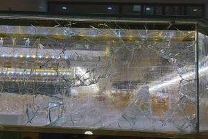 Quảng Ngãi: Táo tợn cướp tiệm vàng trong đêm