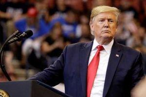 Tổng thống Trump không ra điều trần luận tội tại Hạ viện