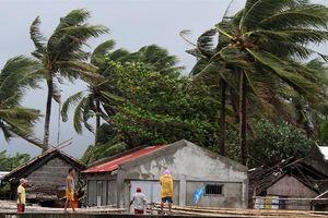 Nhiều môn thi đấu tại SEA Games 30 bị hoãn vì siêu bão Kammuri
