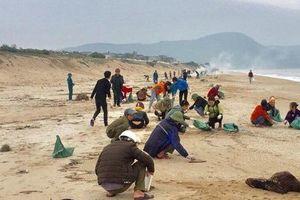 Hà Tĩnh: Xử lý triệt để dầu loang dạt vào bờ biển