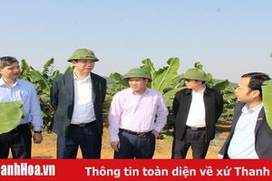 Đoàn công tác của Sở NN&PTNT làm việc với Công ty CP thực phẩm xuất khẩu Đồng Giao