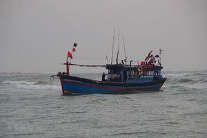 Ảnh hưởng bão số 7, 1 tàu cá Quảng Ngãi chìm ở vùng biển Hoàng Sa