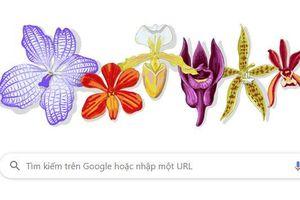 Trang chủ Google ngày 04.12 vinh danh Giáo sư Rapee Sagarik, ông là ai?