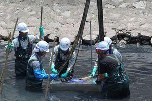 Đề xuất cho Hà Nội thuê công nghệ làm sạch sông Tô Lịch
