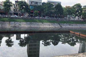 Vì sao Hà Nội chưa công bố kết luận thanh tra việc dùng hóa chất làm sạch hồ?