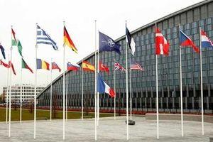 Xung đột nội bộ 'phủ bóng' Hội nghị Thượng đỉnh NATO