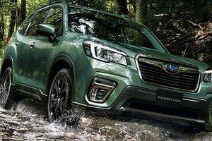 Subaru Forester X-Edition 2020 từ 676 triệu đồng tại Nhật Bản